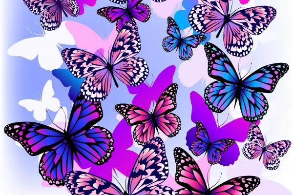 Muchas mariposas de colores 60109 - Imagenes de mariposas de colores ...