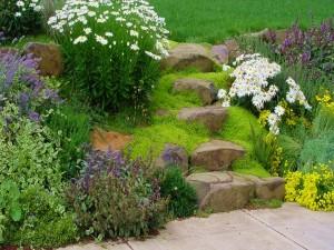 Escaleras de piedra en un bonito jardín