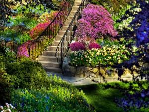 Escaleras en un bonito jardín