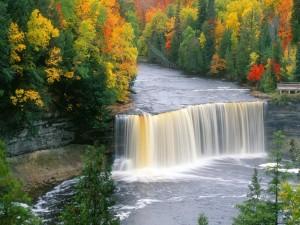 Río visto en otoño