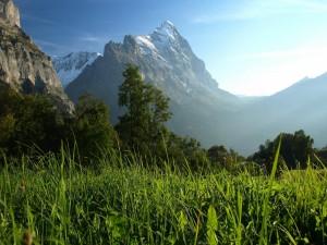 Hermosa montaña vista desde un campo verde