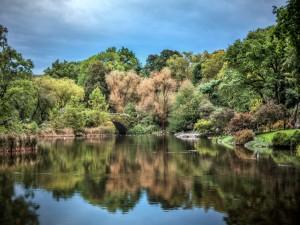 Un hermoso parque