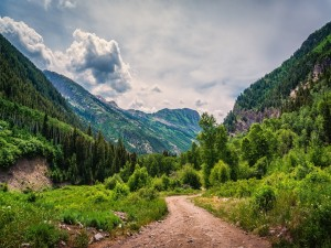 Camino entre montañas