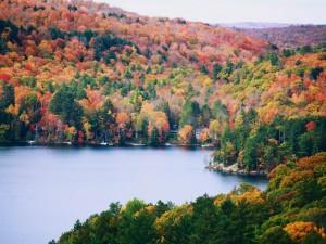 La hermosura del otoño junto a un lago
