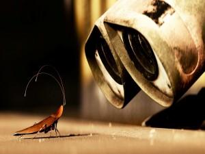 Wall-E observando a una cucaracha