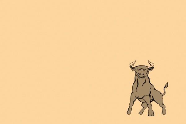Un fuerte toro
