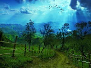 Camino hacia las montañas iluminadas por los rayos del sol