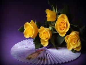 Ramo de rosas amarillas sobre un abanico
