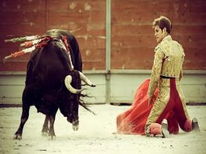 Torero de rodillas ante un toro