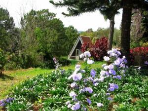 El jardín de una bonita casa