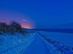 Camino en una noche de invierno