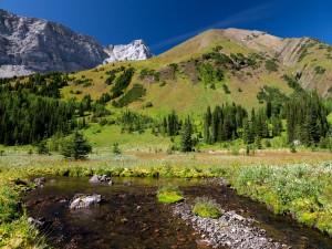 Río a los pies de una montaña