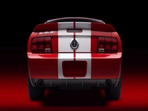 Parte trasera de un Ford Shelby