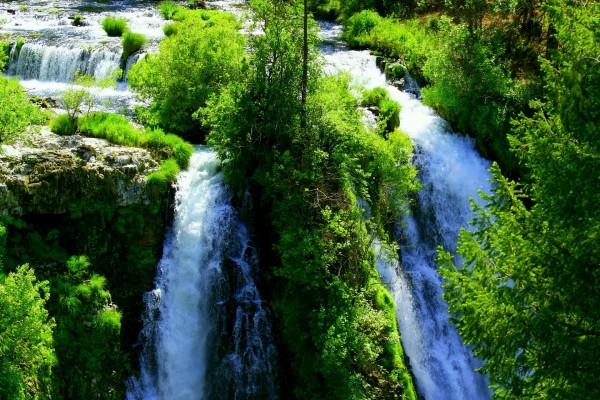 Río cayendo en cascada entre árboles verdes