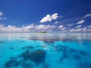 Isla en un mar transparente