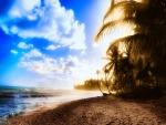 Sol tras las palmeras iluminando una playa