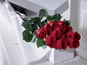 Hermosas rosas rojas dentro de una caja para regalar