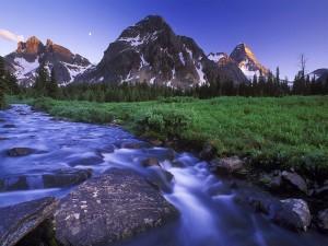 Hermoso río bajo las montañas visto al amanecer