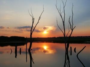 Sol y nubes reflejados en un lago