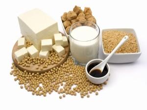 Semillas y alimentos derivados de la soja