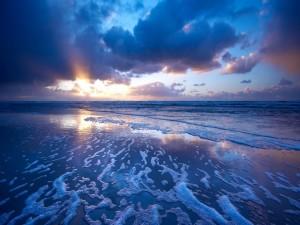 Espuma en la orilla del mar