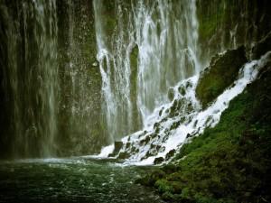 Cascada en una pared cubierta de musgo verde