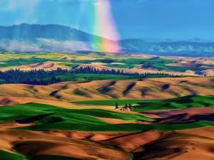 Vistas de unos campos de cultivo