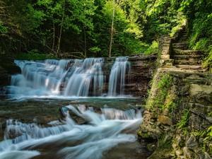 Escaleras junto a una cascada