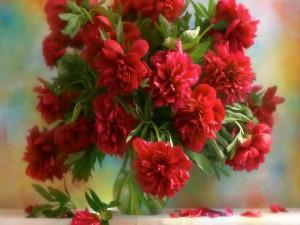 Postal: Ramo de peonías rojas en un florero