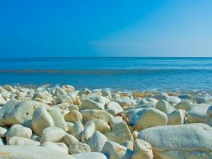 Piedras blancas en una playa