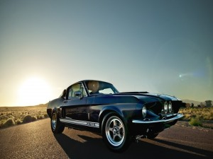 Ford Mustang Shelby GT 500 en una carretera