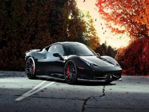Ferrari negro junto a unos árboles otoñales