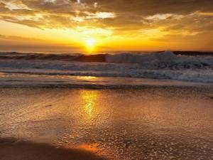 Hermoso sol reflejado en la orilla del mar
