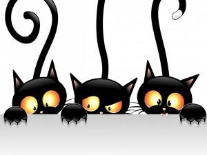 Tres simpáticos gatos negros