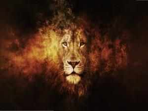 La cabeza de un león
