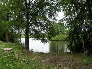 Paseo junto a un río
