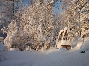 Paisaje invernal cubierto de nieve