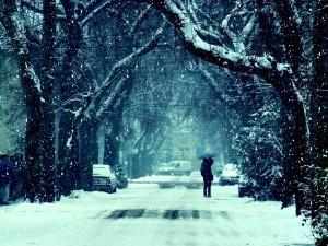 Pareja besándose bajo la nieve