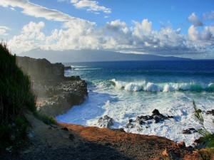 Oleaje junto a la costa