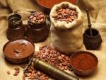 Semillas de cacao, cacao en polvo y chocolate fundido