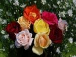 Ramos con rosas de varios colores