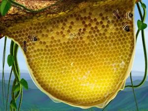 Las abejas hacen la miel