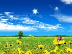 Sensacional día de verano