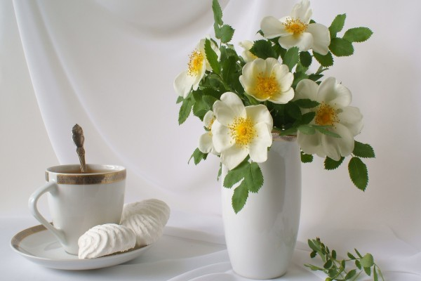 Té y flores