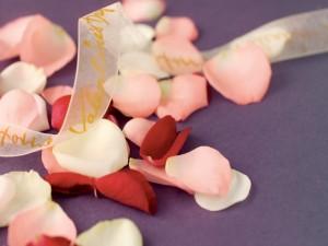 Lazo sobre unos pétalos de rosa
