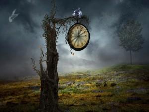 Reloj en un árbol