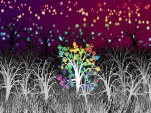 Estrellas de colores por encima de la hierba