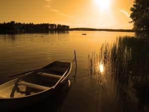 Sol reflejado en un río