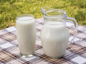 Vaso y jarra de leche sobre un mantel