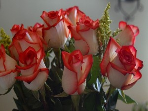 Espléndido ramo de rosas
